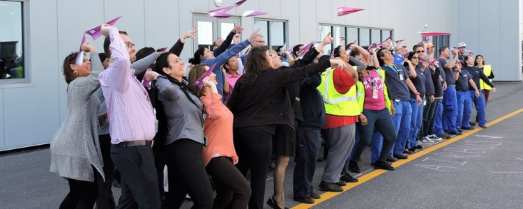 The Pink Paper Plane Challenge