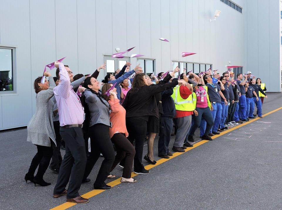 Pink plane challenge